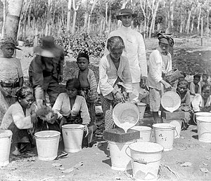 The sifting of the latex-milk in Bogor, West-Java