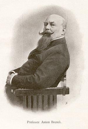 English: Professor Anton Brenek Deutsch: Profe...