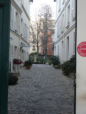 Rue du Cardinal-Lemoine; Paris; Backyards