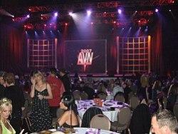2007 AVN Ödülleri