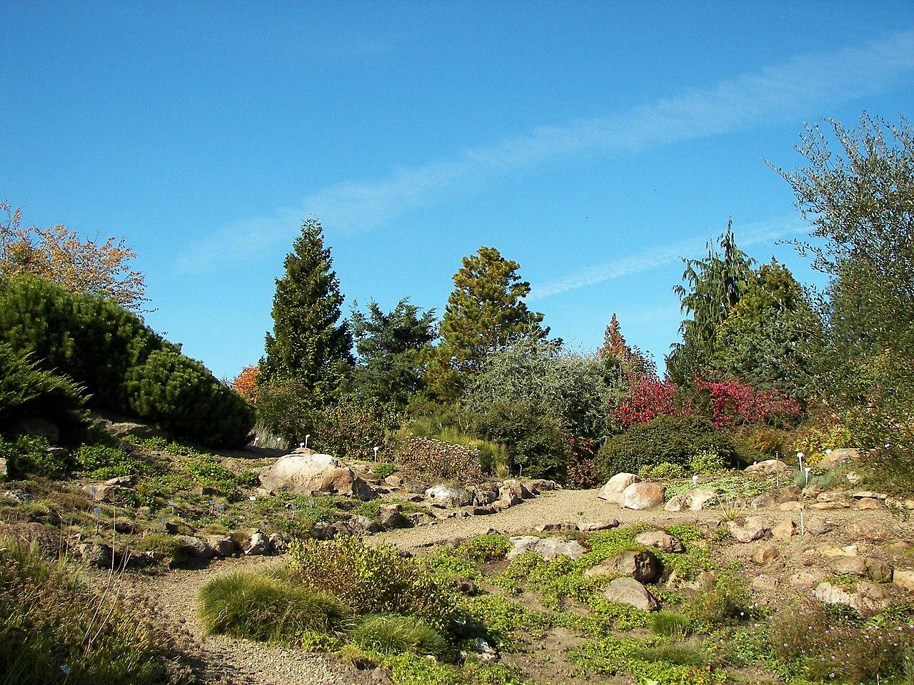 Datei Neuer Botanischer Garten Marburg 008 – Wikipedia