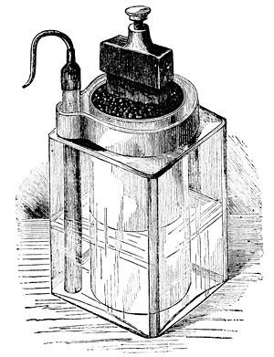 Popular Science Monthly/Volume 18/November 1880/The