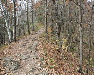 English: Hiking trail to Chimney Rock in White...