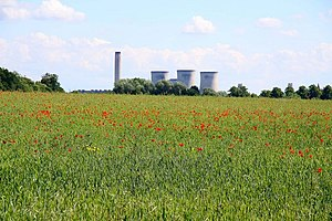 English: Field of wildflowers at Culham