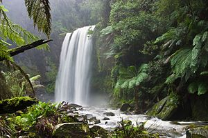 Hopetoun Falls, Victoria, Australia. Se ha prestado mucha atención a la conservación de la flora y de otras caracteristicas naturales de este lugar, al mismo tiempo que se ha permitido un mayor flujo de visitantes.