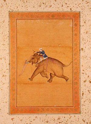 A Mahout riding an Elephant