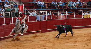Lagos bullfight