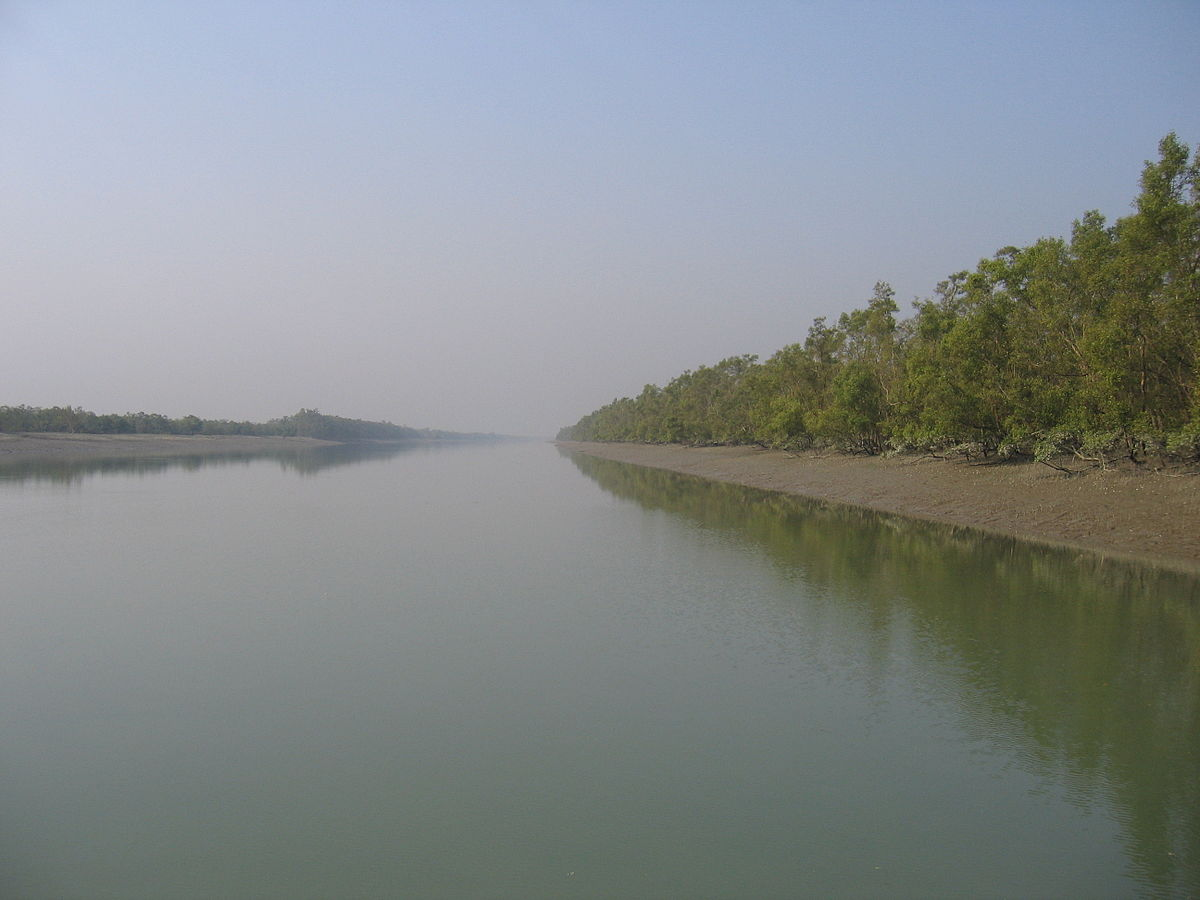 Sundarbans National Park  Travel guide at Wikivoyage
