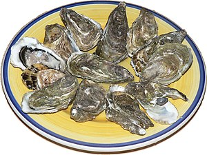 Oysters, opened, ready for consumption, raw