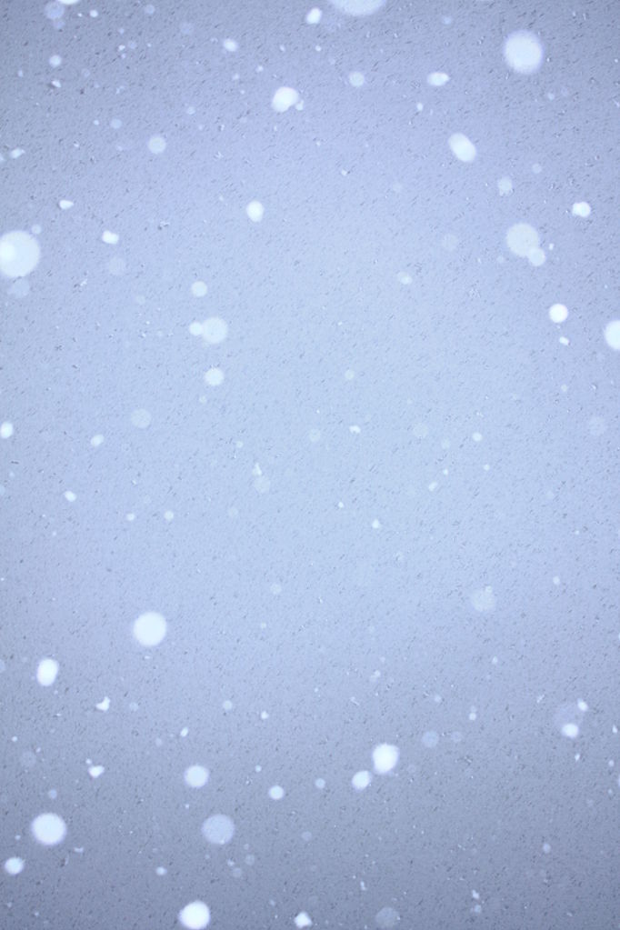 Animated Christmas Wallpapers Free Download File Free Snow Falling On Blue Sky Unedited Creative
