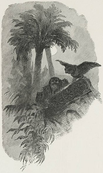 English: Two owls among the palm trees.