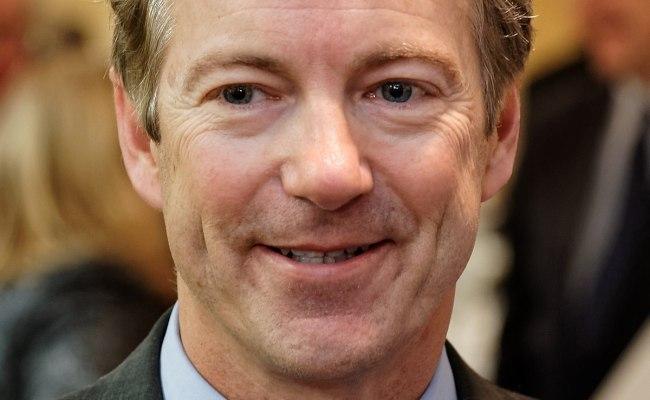 Rand Paul Wikipedia