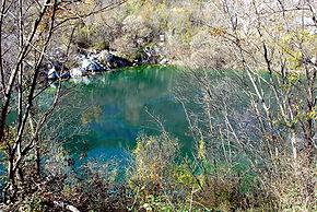 Forgaria nel Friuli  Wikipedia