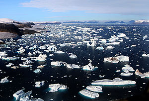 Icebergs are breaking off glaciers at Cape Yor...