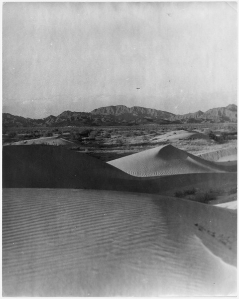 Print of section of photograph, Imperial Valley, 1901 - NARA - 296427
