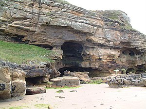 English: Sandstone Cliff and Caves at Clashach...