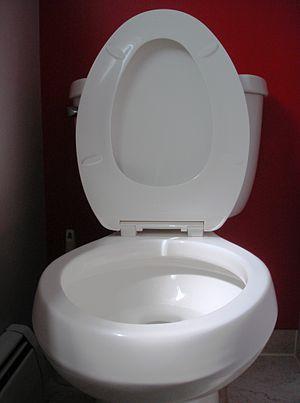 English: toilet seat up Deutsch: hochgeklappte...