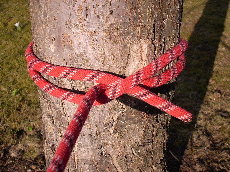 Ends Two People Pulling Rope Are