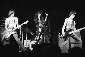 Concert by the touring Ramones, at the New Yor...