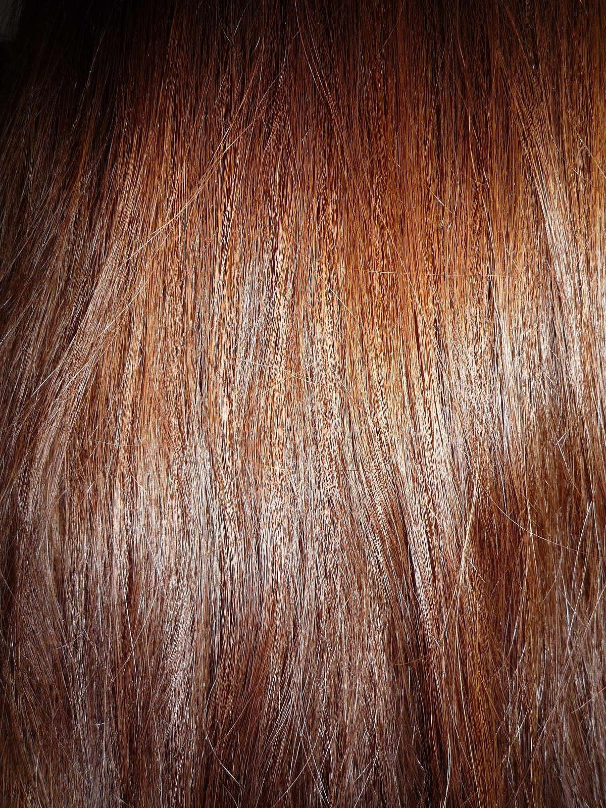Brown Hair Wikipedia