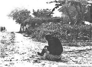Unidentified Vietnamese man (during the My Lai...
