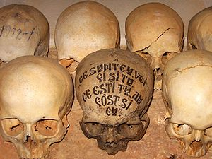 On a skull in the ossuary of the Romanian Sket...