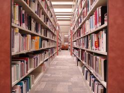 SteacieLibrary