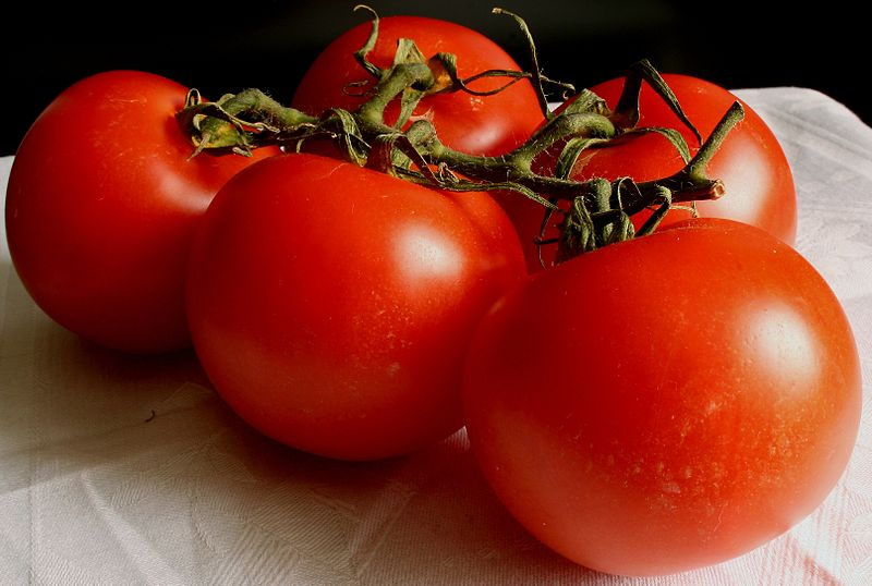 https://i0.wp.com/upload.wikimedia.org/wikipedia/commons/thumb/3/3b/Tomate_2008-2-20.JPG/800px-Tomate_2008-2-20.JPG