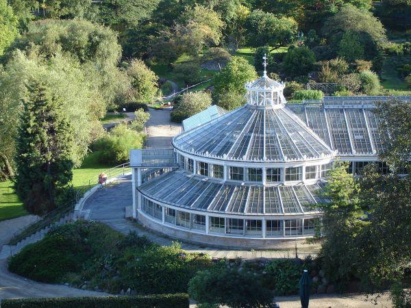 file greenhouse in botanical garden