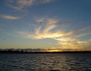 English: Hauraki Gulf, New Zealand. Looking no...
