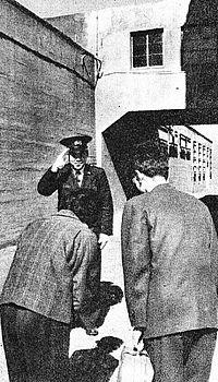 仮釈放 - Wikipedia