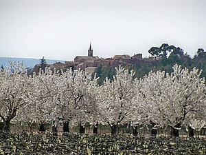 English: Cherry trees field near Villars, Vauc...