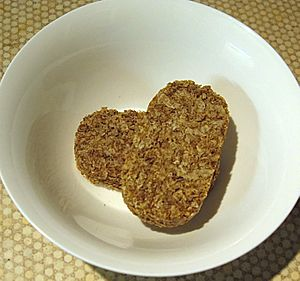 Two Weetabix in a bowl before milk is added