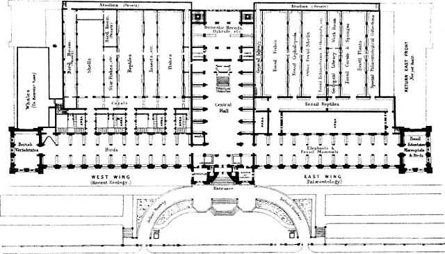 File:A general guide to the British Museum (Natural