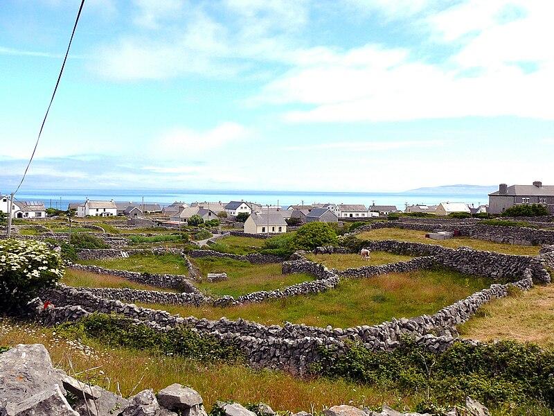 File:Aran Island stone walls.jpg
