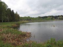 Lake Arbi - Wikipedia