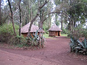 Traditional Luo village, as depicted at Bomas ...