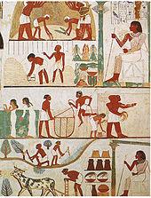Sektor Pertanian Di Mesir : sektor, pertanian, mesir, Mesir, Wikipedia, Bahasa, Indonesia,, Ensiklopedia, Bebas