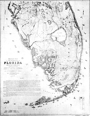 Map of the Everglades by US War Department, 1856