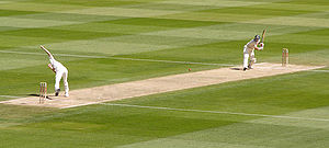 Cricket picture