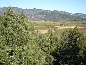 The California wine region Diamond Mountain Di...