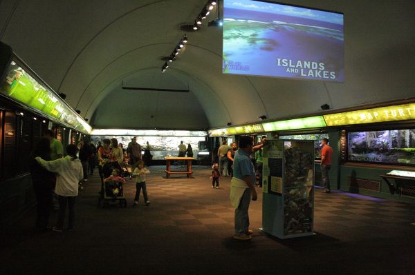 File Islands And Lakes Exhibits Shedd Aquarium 2009-11