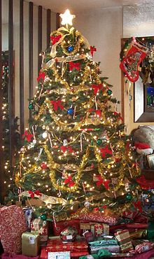 A Christmas Tree Inside Home