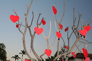 Tree decorated for Valentine's Day in San Dieg...