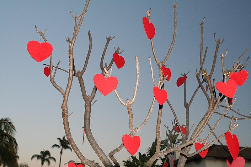 File:Valentinesdaytree.jpg