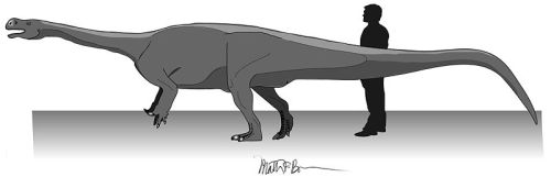 File:Fig 2 - Aardonyx life restoration by Matthew Bonnan.jpg