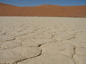 English: Common view of parched earth in Dead Vlei