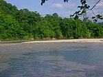 Chapare´s river.jpg
