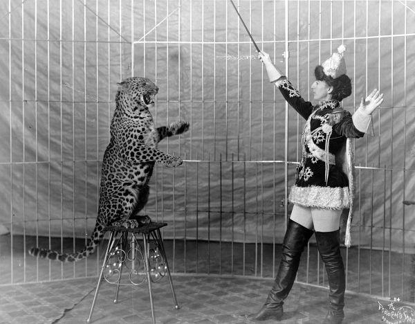 Animal Training - Wikipedia
