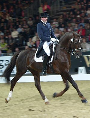 An upper-level dressage competitor performing ...
